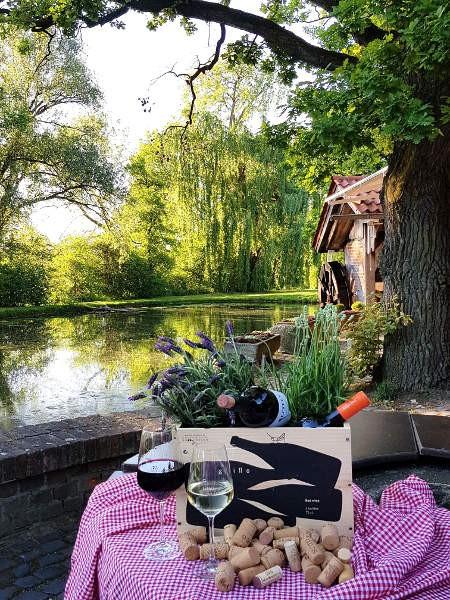 Wein-schloss-moehler_komp